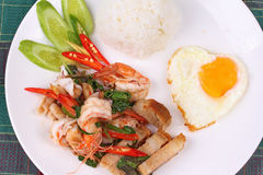 Jasmine rice topped stir - fried spicy basil with meat. Royalty Free Stock Photos