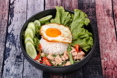 Jasmine rice topped stir - fried spicy basil with meat. Stock Image