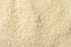 Jasmine rice Royalty Free Stock Image