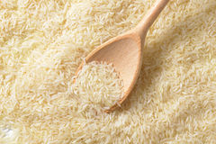 Jasmine rice Stock Photography