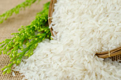 Jasmine rice in weave wooden basket with flower. Stock Photo