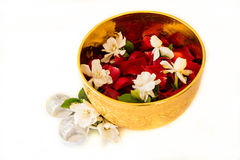 Jasmine and roses corolla in bowl on white background Stock Images