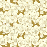 Jasmine seamless pattern Royalty Free Stock Images