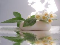 Jasmine soap. Still life with Jasmin flower and soap royalty free illustration