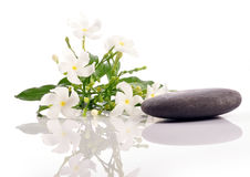 Jasmine spa. Treatment elements on white stock images