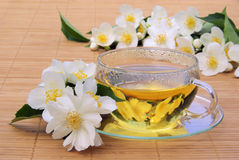 Jasmine tea Stock Images