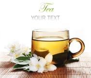 Jasmine Tea Stock Photos