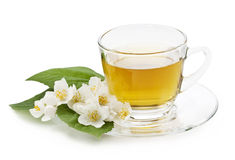 Jasmine tea Royalty Free Stock Photos