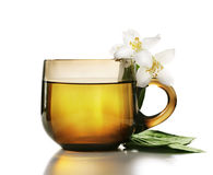 Jasmine Tea Stock Image