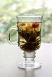 Jasmine Tea. A kind of jasmine tea of Chinese origin Stock Images