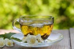 Jasmine Tea Foto de archivo libre de regalías