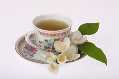Jasmine tea. Cup of tea with jasmine flowers Stock Images