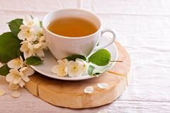 Jasmine tea in a cup with fresh flowers Stock Images