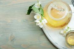 Jasmine tea in a glass tea pot on blue wooden background Royalty Free Stock Photos