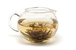 Jasmine tea . Jasmine tea in a glass teapot on a white background Royalty Free Stock Photography