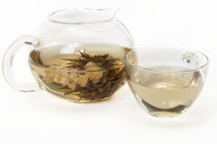 Jasmine tea . Jasmine tea in a glass teapot on a white background isolated Stock Photography