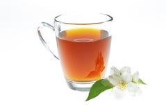 Jasmine tea with jasmine flower Royalty Free Stock Photos