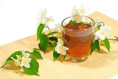 Jasmine tea with jasmine flowers Stock Image
