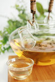 Jasmine tea in a kettle Royalty Free Stock Photos