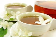 Jasmine tea for two Royalty Free Stock Image