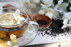 Jasmine tea. On a wooden table Stock Image