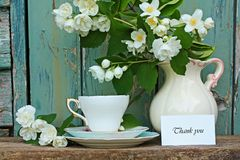 Jasmine thank you card. Jasmine flowers, teacup, and thank you card stock image