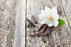 Jasmine with vanilla. On a wooden board stock photography