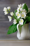 Jasmine in a white vase on wooden boards Stock Images