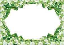 Jasminrahmen lokalisiert auf weißem Hintergrund Stockbild