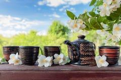 Jasminte i små keramiska koppar Arkivbild
