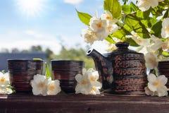 Jasminte i små keramiska koppar Royaltyfri Bild
