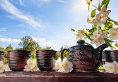 Jasminte i små keramiska koppar Royaltyfri Foto