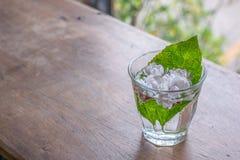 Jasminum στο γυαλί στο ξύλινο επιτραπέζιο υπόβαθρο με την κλίση Στοκ Εικόνα