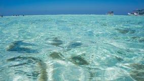 Jasna, czysta woda morska w płytkim terenie z i obrazy royalty free