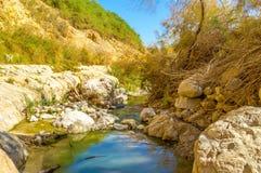 Jasna woda Fotografia Royalty Free