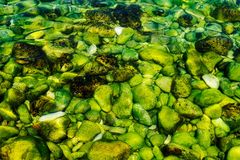 Jasna woda i skały Fotografia Stock