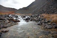 Jasna woda w niewygładzonej halnej rzece fotografia royalty free