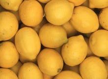 jasne, żółte cytrynowy Zdjęcie Stock