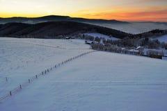 jasne futerkowy na czerwony słońca zachód słońca na zimę drzewa Obraz Royalty Free