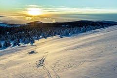 jasne futerkowy na czerwony słońca zachód słońca na zimę drzewa Obrazy Royalty Free