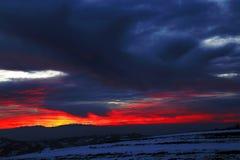 jasne futerkowy na czerwony słońca zachód słońca na zimę drzewa Zdjęcia Stock