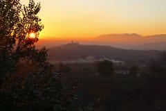 jasne futerkowy na czerwony słońca zachód słońca na zimę drzewa Obrazy Stock