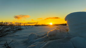jasne futerkowy na czerwony słońca zachód słońca na zimę drzewa zbiory