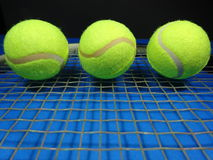 - jasne, pochodzenie jaj zielony jednorodny jedna położyć większy tenis Fotografia Stock
