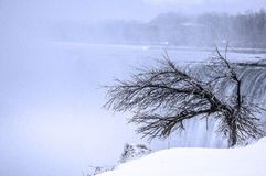 Zimy scena Fotografia Royalty Free