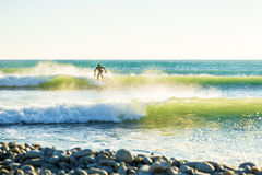 Jasnego surfingowiec na fala i fala Surfować w zielonych fala Fotografia Royalty Free