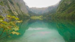 Jasny błękitny jezioro z klonowym drzewem w wysokogórskiej panoramie obrazy royalty free