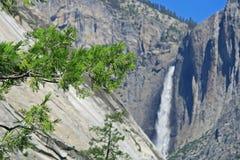jasny dzień spadać lato Yosemite Fotografia Royalty Free
