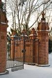 jasny dzień bramy zima Obrazy Royalty Free