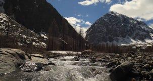 Jasny halny rzeczny wiosna dzień czochry na wodzie 4K postanowienie zdjęcie wideo